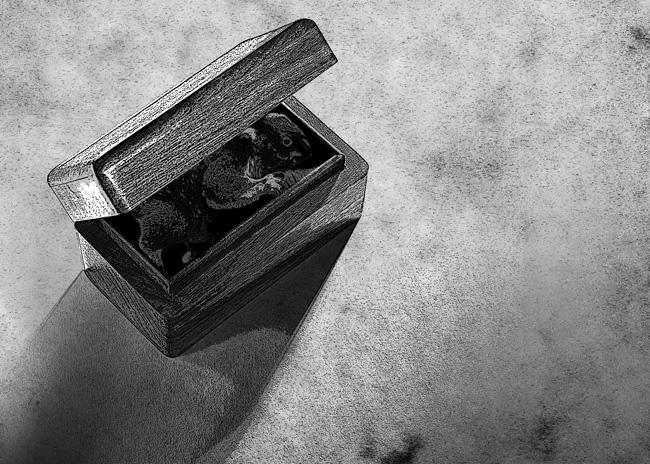 box_081
